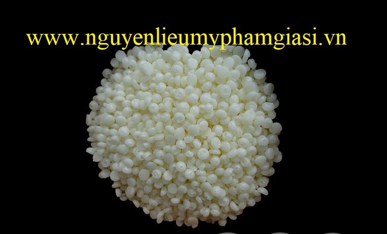 18102018_120400_9002_sap-nhu-hoa-sepf-gia-si-1.jpg