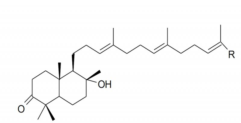 commipheroline-gia-si-2-1545887797.png