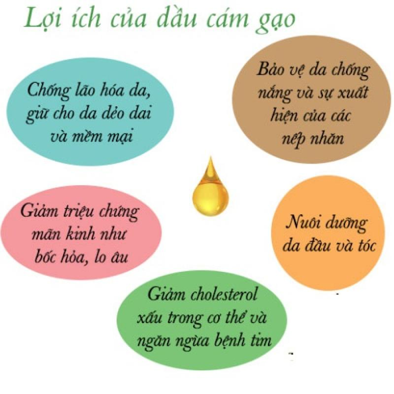 dau-cam-gao-2-1537947458.jpg