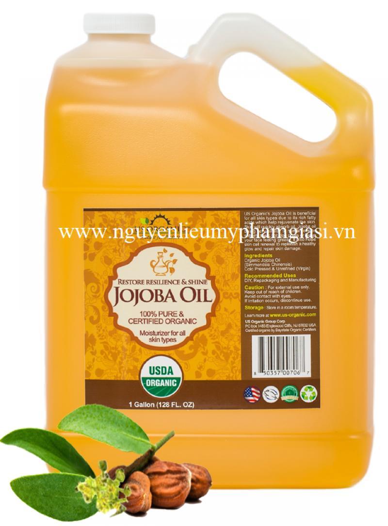 Dầu jojoba – Cung cấp dầu jojoba giá sỉ cho kem dưỡng da, dầu gội đầu, mỹ phẩm