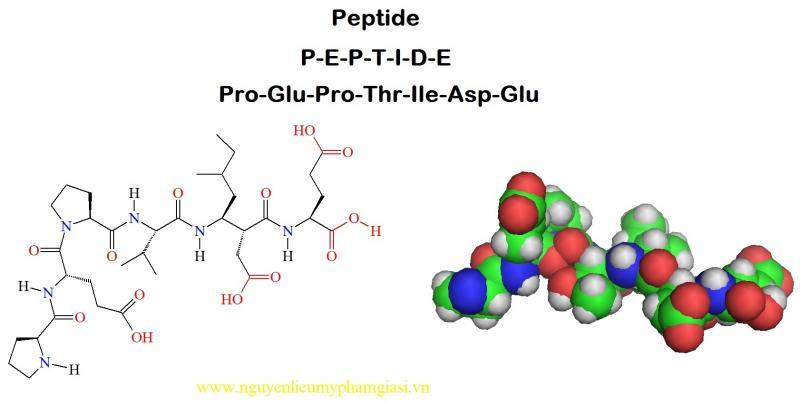 peptide-gia-si-2-1539235349.jpg