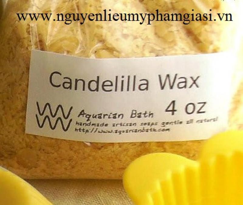 Sáp Candelilla (Candelilla wax) - Cung cấp Sáp Candelilla giá sỉ cho thị trường toàn quốc