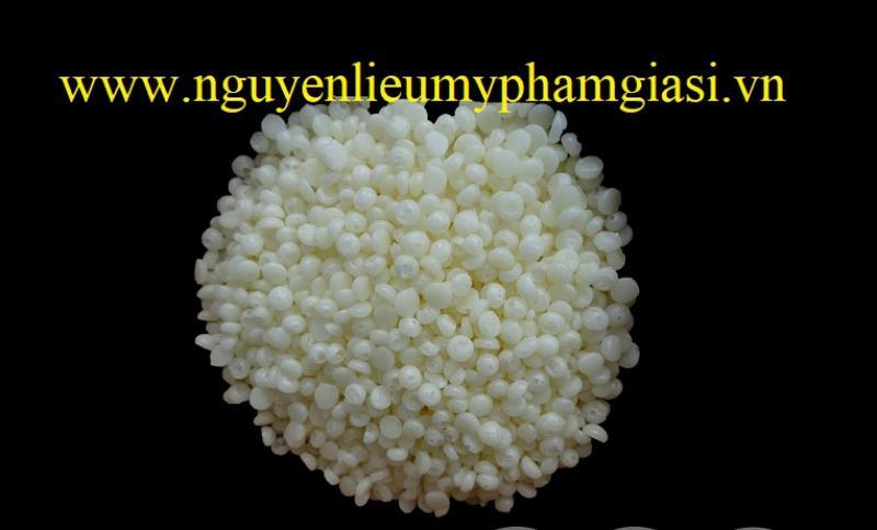 sap-nhu-hoa-se-pf-gia-si-1-1539838956.jpg